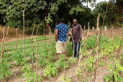 Un tour à Bignona, Casamance 3